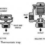 Thermostatic Traps